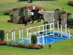 Equestrian: Jumping ~ this jump is enormous..