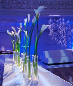 It's all about lighting! There is something about simple white flower arrangements and a splash of color from light to create a modern and elegant yet romantic reception.