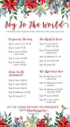 Last year, I released my first ever Bible reading plan. It was a Christmas themed plan that I prayed would help us keep our eyes Bible Study Plans, Bible Plan, Bible Study Journal, Bible Reading Plans, Scripture Reading, Scripture Study, Scripture Writing Plan December, Bible Words, Bible Scriptures