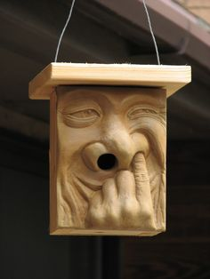 """""""Please come live in my nose""""....a feeder and birdhouse foe wrens."""