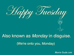 Happy Tuesday! Also known as Monday in disguise. (We're onto you, Monday.)
