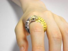 Leopard Gecko Ring The Effective Pictures We Offer You About list of Exotic pets A quality picture can tell you Lepord Gecko, Leopard Gecko Cute, Cute Gecko, Leopard Gecko Habitat, Baby Leopard, Cute Reptiles, Reptiles And Amphibians, Cute Lizard, Polymer Clay Ring
