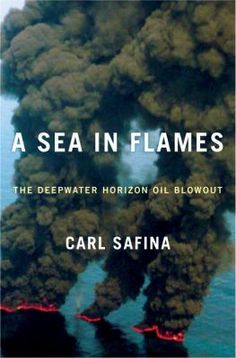 A sea in flames : the Deepwater Horizon oil blowout - Carl Safina  Call Number: GC1221 .S24 2011