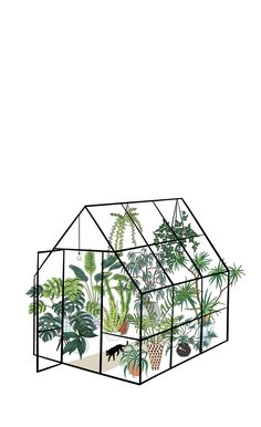 greenhouse with plants Blackout Curtain by anyuka greenhouse with plants Window Curtains Painting Inspiration, Art Inspo, Stickers Cool, Illustration Blume, New Wall, Botanical Art, Aesthetic Art, Painting & Drawing, Cool Art