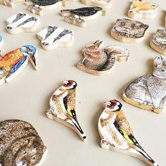 #illustration #London #artist #britishwildlife #fox #birds #britishanimals #rabbit #handpainted #grey #animals #vegan #recycled #ethical #jewellery #kingfisher #commission #artoftheday #artwork #artisan #etsy #illustrationoftheday #illustratorsofinstagram