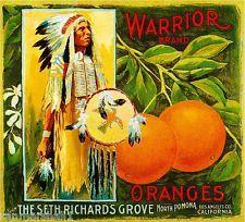 Pomona Warrior #1 Orange Citrus Crate Label Art Print
