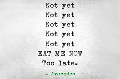 Funny pictures about How I Feel About Avocados. Oh, and cool pics about How I Feel About Avocados. Also, How I Feel About Avocados photos. The Words, Haha Funny, Hilarious, Funny Humor, Funny Stuff, I Love To Laugh, Story Of My Life, How I Feel, Just For Laughs