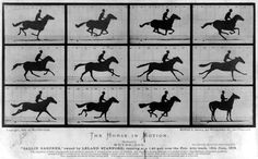 June 19th, 1878, Eadweard Muybridge took a series of photos of a galloping horse at California Governor Leland Stanford's Palo Alto Stock Farm. The study became called Sallie Gardner at a Gallop or The Horse in Motion. It is one of the first pieces of photographic evidence that a horse has a moment of suspension in the gallop.