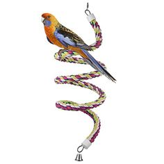 Pet Products Able Colorful Blend Cotton Rope Bell Bird Parakeet Parrot Toys Chew Bite Hanging Cage More Discounts Surprises Bird Supplies