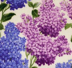 "Pretty Purple & Pink Lilac Flowers Fabric  Five - 6""  Cotton Fabric Block Quilt Charm  5 Pieces Pretty Purple Pink Lilac Flowers # 301-618"