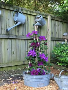 Der Charme von Clematis - FineGardening - Clematis & Galvanized Water Can Proje. The Charm of Clematis - FineGardening - Clematis & Galvanized Water Can Project Idea Cheap Landscaping Ideas, Small Front Yard Landscaping, Backyard Landscaping, Landscaping Design, Corner Landscaping Ideas, Walkway Ideas, Farmhouse Landscaping, Fence Ideas, Garden Art