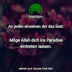 Amin ❤