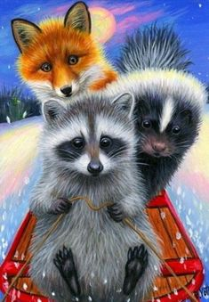 Raccoon Drawing, Raccoon Art, Animals And Pets, Baby Animals, Cute Animals, Animal Pictures, Cute Pictures, Foto Picture, Moon Painting