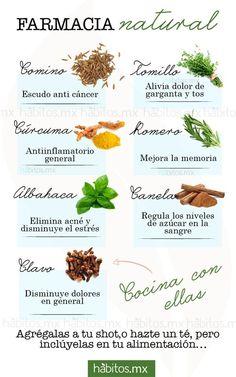 alimentos que ayudan a tu cuerpo