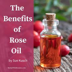 Discover the benefits of rosehip oil for your skin. Essential Oils 101, Rose Essential Oil, All Natural Skin Care, Organic Skin Care, Rose Oil Benefits, Herbs For Health, Health Tips, Skin Care Remedies, Herbal Remedies