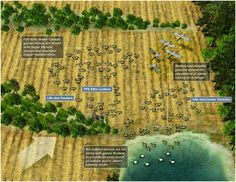 duck decoy spreads | ... of Radcliffe's Plantation Goose Spread – click image to enlarge
