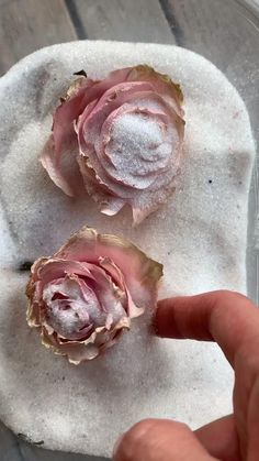 Diy Resin Art, Diy Resin Crafts, Flower Crafts, Flower Art, Drying Flowers, Dried And Pressed Flowers, Clay Food, Silica Gel, How To Preserve Flowers