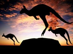 Australia-jedna z najkrajsich krajin
