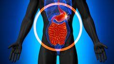 Darmentleerung: Wie wichtig es ist, beim Heilfasten für die Darmreinigung zu…