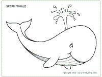 Walvis, ook in gekleurde versie