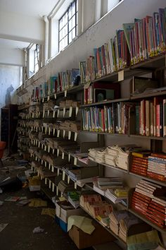 Mark Twain Branch Library - Detroit Abandoned with books left on the shelves.  What a shame.  So many kids would love to have these books, as would adults.