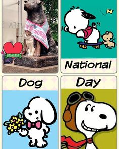 "10 Likes, 3 Comments - Silvia Antonelli (@silvia.ant.752) on Instagram: ""Happy National Dog Day #nationaldogday #dogday #hachiko #sanrio #pochacco #peterdavis #snoopy…"""