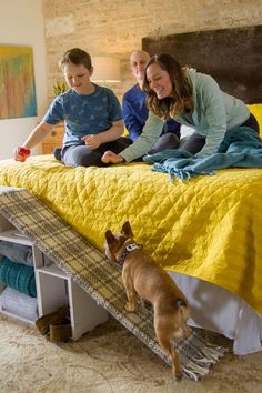 diy dog DIY Window Seat Basket for Cat Dog Stairs For Bed, Dog Ramp For Bed, Diy Dog Bed, Diy Bed, Homemade Dog Bed, Cat Ramp, Outdoor Dog Bed, Dog Steps, My Bebe