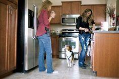 I Home Carry…Do you? | Home Defense & Self Defense by Gun Carrier at http://guncarrier.com/home-carry/