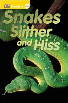 Snakes Slither and Hiss (Hardcover)