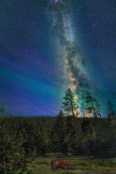 Milky way from Yellowstone Park-35