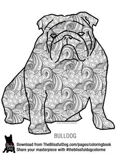 bulldog coloring pages bulldog for coloring book Peggy605