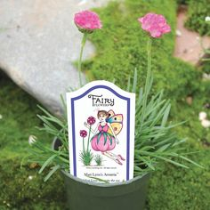 Armeria™ (Armeria maritima compacta) / full sun to part sun / tall / drought tolerant when established Fairy Garden Plants, Fairy Garden Houses, Garden Shop, Fairy Gardening, Fairies Garden, Vintage Outdoor Decor, Globe Flower, Miniature Fairy Gardens, Mini Gardens