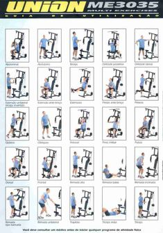 weider pro 6900 exercise chart  gym workout chart home