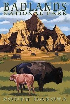 Badlands National Park, South Dakota - Bison Scene - Lantern Press Artwork