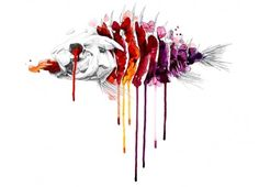 threadless-fish-500x361.jpg (500×361)