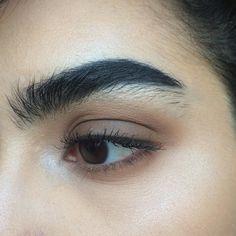 Brown eye and bold brow