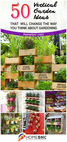 Best Vertical Garden Designs