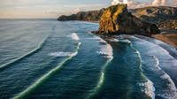 Half-Day Wild West Coast Tour from Auckland