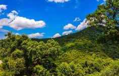 الطبيعية العالمية الجزائر 277867317.jpg