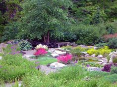 japanese garden exhibition model small pond flowers grass trees stones traditional asian landscape seating of Lovely Japanese Garden Exhibition Model Choices