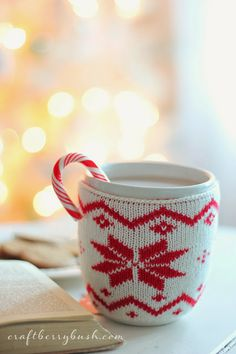 I love her mug cozy! Great idea for hot cocoa!