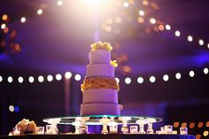 Cake lighting at the Waldorf Astoria Orlando. Lighting by www.keventlighting.com #cakelighitng #weddingcakelighting #weddingcake #weddingcakes #wedding #cake