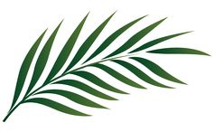 palm sunday palm crafts | Palm Fun Day Sunday March Christ United Methodist Church