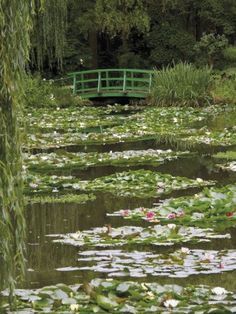 Nov 2019 - Photographic Print: Japanese Bridge and Lily Pond in the Garden of the Impressionist Painter Claude Monet, Eure, France by David Hughes : Spring Aesthetic, Nature Aesthetic, Aesthetic Green, Aesthetic Japan, Images Esthétiques, Different Aesthetics, Cottage In The Woods, Photocollage, Lily Pond