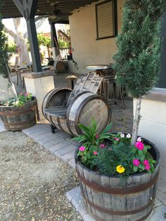 http://www.galleanowinery.com/ -- We are keeping the barrel seat warm for you! -- Have you been to visit our winery before? What did you think? Comment below!