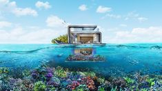 The Floating Seahorse Home