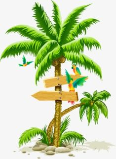 Tropical palm tree PNG image with transparent background Palm Tree Clip Art, Palm Tree Png, Palm Tree Drawing, Palm Trees, Coconut Tree Drawing, Hawaiian Crafts, Coconut Palm Tree, Tree Clipart, Tree Illustration