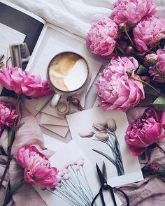 Pausa con cappuccio e le rose