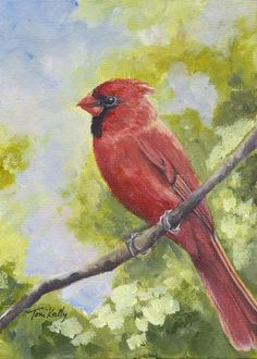 A collection of Toni's bird paintings in nature, on old book covers, in still life paintings and mixed media. Still Life, Bird Paintings, Watercolor, Nature, Art, Paintings Of Birds, Pen And Wash, Art Background, Watercolor Painting