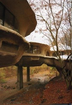 f27  Amazing Homes Built Into Nature